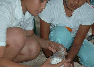7 proyecto nicaragua