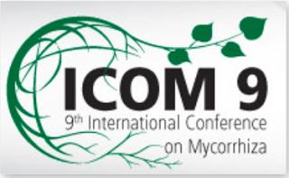 icom-9