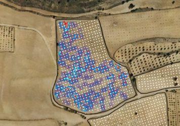 Mapa de cultivo de trufas