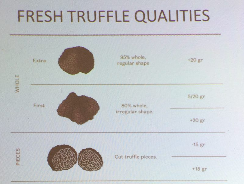 truffle-grading-qualities