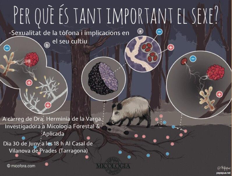charla micofora cultivo trufas
