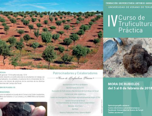 Nuevos cursos de Truficultura para 2018