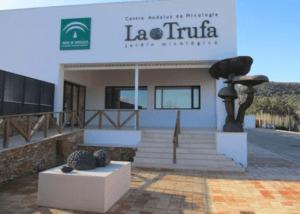 Creación De Un Jardín Micologico - Junta De Andalucia (Cordoba)