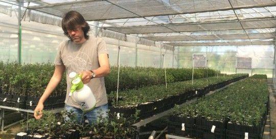 Proyecto I+D Para El Desarrollo De Un Abono Para Cultivo De Trufas