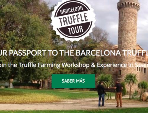 Abiertas las inscripciones para las nuevas ediciones del Barcelona Truffle Tour 2017-18
