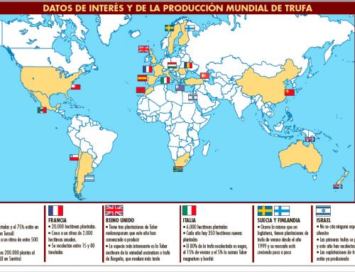 truficultura en el Mundo en 2018