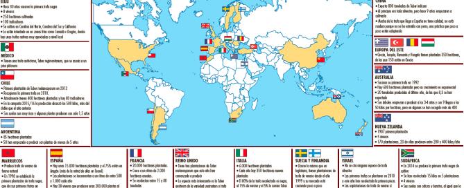 cultivo trufas en el Mundo segun micofora