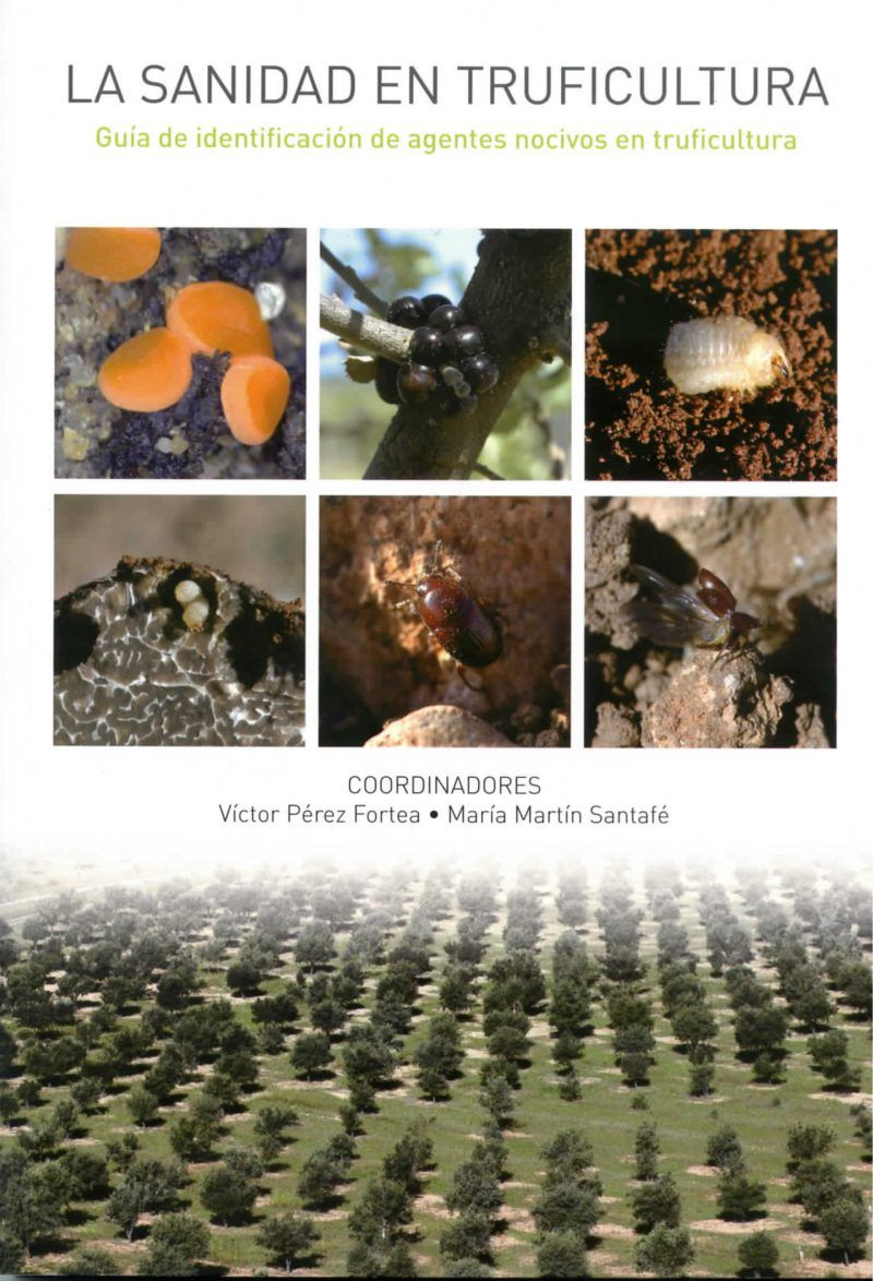 plagas y enfermedades de árboles truferos