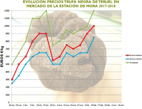 ¿Como ha ido la temporada 2017-18 de trufa negra en España?