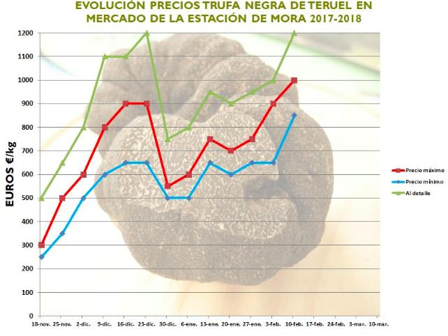 precios trufa negra Teruel España 2018