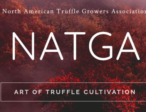 Nuevas conferencias sobre Truficultura en los EE.UU