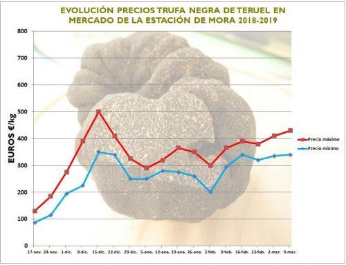 Precios y volúmenes de trufa en la campaña 2018-19 en España y Francia