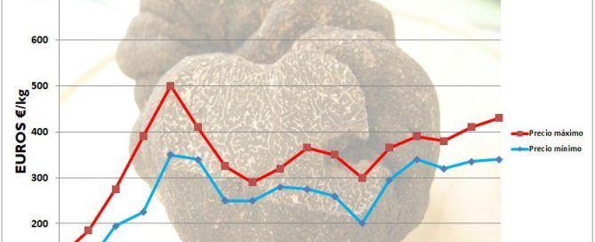 trufa negra precios en España 2019